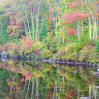Reflection of the fall foliage at Kettle Pond, in the Groton State Forest, Groton, Vermont.