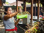 11 OCTOBER 2016 - UBUD, BALI, INDONESIA:       PHOTO BY JACK KURTZ