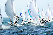 Miami, USA, January 20, 2014 -   The 470 fleet approaches the leeward mark at the 2014 North American Championships.