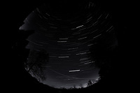 Night Sky Over New Jersey. Composite of images (03:00-03:59)  taken with a Nikon D850 camera and 8-15 mm fisheye lens (ISO 800, 10 mm, f/5.6, 30 sec).