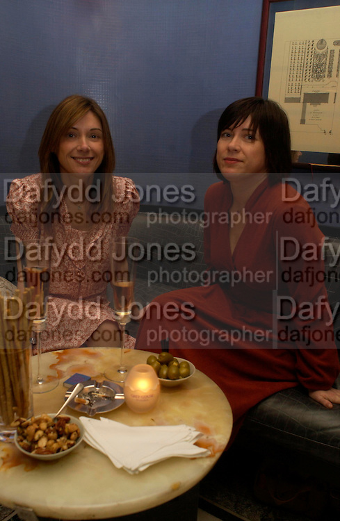 Louise and Jane Wilson. Zac Posen Spring/ Summer collection launch party. The Blue Bar, Berkeley Hotel. London. 7 March 2004. Dafydd Jones,  ONE TIME USE ONLY - DO NOT ARCHIVE  © Copyright Photograph by Dafydd Jones 66 Stockwell Park Rd. London SW9 0DA Tel 020 7733 0108 www.dafjones.com
