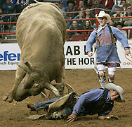 Elvis Urbina has a bull try to lift him with its horns as a bullfighter comes to help (R) during the second round of the Professional Bull Riding competition at the National Western Stock Show in Denver January 11, 2005.  The National Western, now in its 99th year, attracts thousands of livestock growers and is one of the largest livestock exhibitions staged in North America.   REUTERS/Rick Wilking