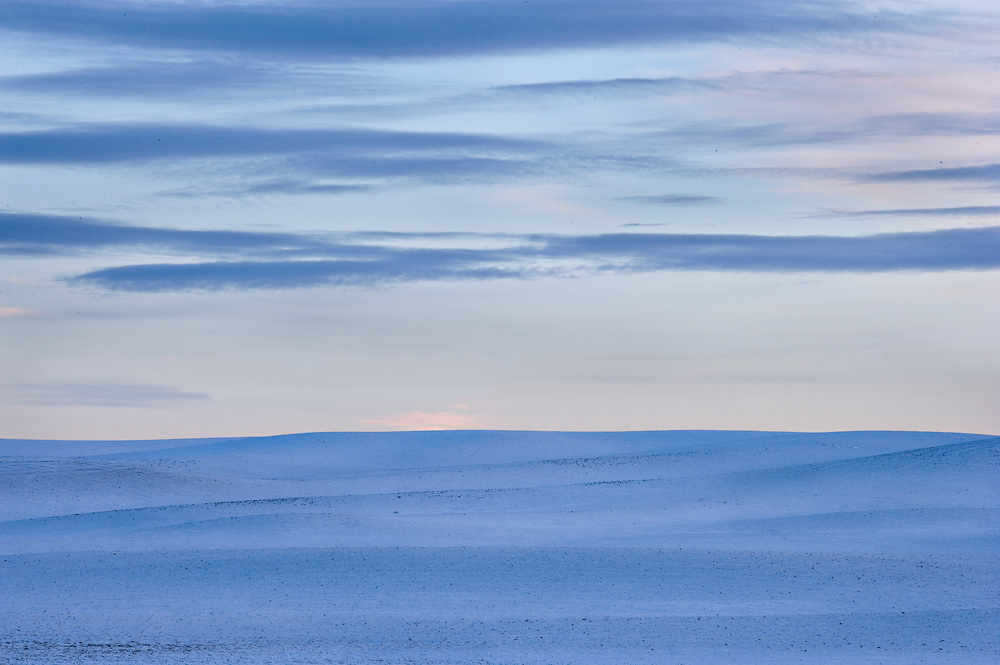 snowy winter wheatfield and sky at twilight, Eastern Washington
