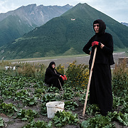 'Morchili' Mariami (right) and 'Deda' Nino in one of their lettuce fields on 28 July 2017. They live in a small abbey in the village of Abano in the Truso Valley, near the border with occupied territory of South Ossetia in the Mtskheta-Mtianeti region of Georgia. The entire valley is all but abandoned, and for most of the year is home only to a lone homesteader, a monk, and four nuns and a priest who live in the abbey.