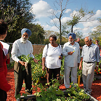 Sahara Community Garden at PCHS, third stop on the World Crops Project City to Country tour.