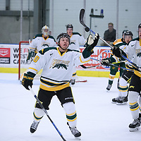1st year forward Ben Duperreault (20)of the Regina Cougars in action during the Men's Hockey Home Game on October 28 at Co-operators arena. Credit: Arthur Ward/Arthur Images