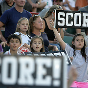Supporters cheer on the Wilmington Hammerheads FC against Toronto FC Wednesday June 18, 2014 at Legion Stadium in Wilmington, N.C. (Jason A. Frizzelle)