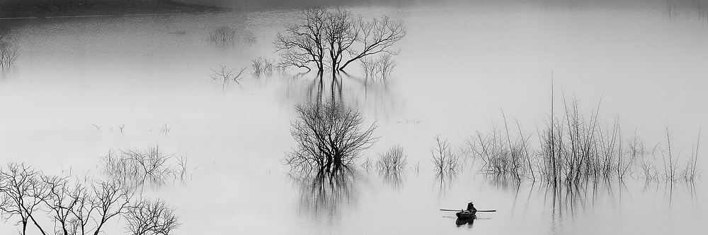 Contained in galleries tree in black and white panoramic landscape vietnam toàn cảnh tree landscape in black and white landscape in panorama