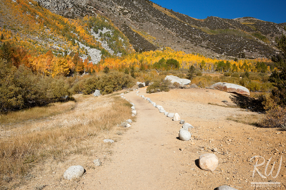 Trail Along South Fork Bishop Creek, Inyo NF, California
