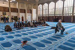 © Licensed to London News Pictures. 05/02/2017. London, UK. Men praying, guided by their Imam, seated, during an open day held at the Central London Mosque near Regent's Park.  Over 150 mosques across the UK have been encouraged to hold mosque open days as part of Visit My Mosque Day, a national initiative facilitated by the Muslim Council of Britain (MCB), showcasing how mosques are not only spiritual focal points, but also servants to their localities helping people of all faiths and none by running food banks, feed-the-homeless projects, neighbourhood street cleans, local fundraising and more. Photo credit : Stephen Chung/LNP