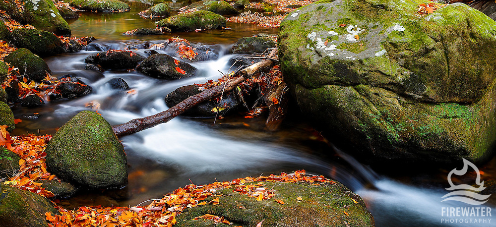 Jones Gap State Park - South Carolina