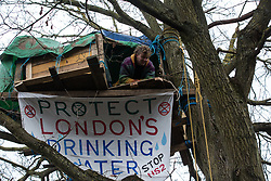 Harefield, UK. 3 February, 2020. An activist looks out from a treehouse high up in a tree at the woodland camp section of Harvil Road wildlife protection camp. Environmental activists from Save Colne Valley and Extinction Rebellion are seeking to prevent construction works for the HS2 high-speed rail link in the Colne Valley which would require the felling of hundreds of mature trees.
