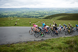 Gruppetto with 100 metres to the top of Epynt, the final climb on Stage 5 of 2019 OVO Women's Tour, a 140 km road race from Llandrindod Wells to Builth Wells, United Kingdom on June 14, 2019. Photo by Sean Robinson/velofocus.com