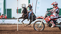 Cavalo Mangalarga vs. Moto na 38ª Expointer, que ocorrerá entre 29 de agosto e 06 de setembro de 2015 no Parque de Exposições Assis Brasil, em Esteio. FOTO: Vilmar da Rosa/ Agência Preview