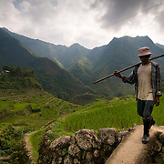 PHILIPPINES (Batad, Province of Ifugao). 2009. Farmer in Batad.