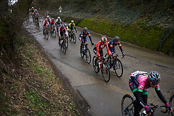 Leah Kirchmann (CAN) in the bunch at Omloop van het Hageland 2019, a 132.6 km road race from Tienen to Tielt-Winge, Belgium on March 3, 2019. Photo by Sean Robinson/velofocus.com