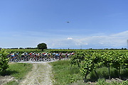 Photo Fabio Ferrari - LaPresse<br /> May 19, 2018  San Vito al taglaimento-Monte<br /> Zoncolan(Italy)  <br /> Sport Cycling<br /> Giro d'Italia 2018 - 101th edition -  stage 14<br /> SAN VITO AL TAGLIAMENTO - MONTE ZONCOLAN<br /> In the pic: peleton during the race
