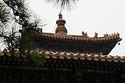 La triple toiture du grand hall d'assemblée.