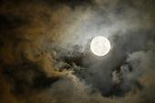 Twilight and Moonlight
