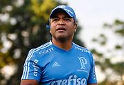 31.05.2018 - SÃO PAULO, SP - Roger Machado, técnico do Palmeiras, durante treino na Academia de Futebol da Barra Funda, na Zona Oeste da capital paulista na tarde desta quinta-feira 31. ( Foto: Marcelo D. Sants / FramePhoto )