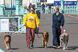 © Licensed to London News Pictures.04/04/2020. Brighton, UK. Members of the public can be seen out and about on the promenade in Brighton and Hove  as sunny and warm weather is hitting the seaside resort. Photo credit: Hugo Michiels/LNP