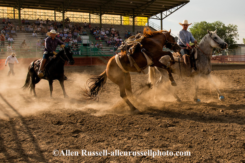 Will James Roundup; Ranch Rodeo; Pickup Men; Brett Marshall; KC Verhelst; Bronc Riding; Hardin; Montana