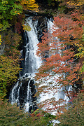 "Fall foliage colors at Kirifuri Waterfall (Kirifuri no taki, ""falling mist""), an impressive, 75 meter high, two-tiered waterfall below the Kirifuri Highlands, a few kilometers northeast of the temples and shrines of Nikko, Tochigi Prefecture, Japan. Foliage colors turn red, orange and gold in autumn, best around late October to early November. Walk 10 minutes to the observation deck from the parking lot and bus stop, near two restaurants and public toilets."