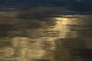Clouds reflected in Lake Washington