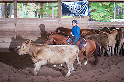 September 24, 2017 - Minshall Farm Cutting 6, held at Minshall Farms, Hillsburgh Ontario. The event was put on by the Ontario Cutting Horse Association. Riding in the 250 Limited Rider Class is Ayden Bourgeois on Smart N Prime owned by the rider.