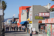 World Famous Downtown Venice Beach California