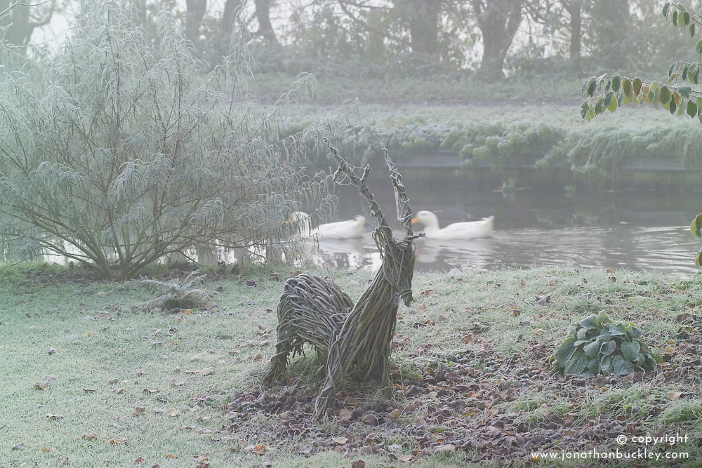 Woven hazel deer in frost with ducks passing by