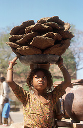 Girl carrying bowl of cow dung balanced on her head,