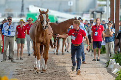 Ehning Marcus, GER, Pret A Tout<br /> World Equestrian Games - Tryon 2018<br /> © Hippo Foto - Jon Stroud<br /> 22/09/2018