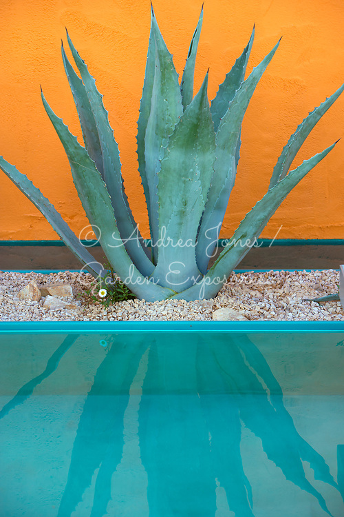 Agave planted in gravel bed reflects in a pool with orange tinted wall<br /> <br /> Mediterranean drought proof garden inspired by the work of Mexican Modernist architect Luis Barragan.<br /> <br /> Inland Homes: Beneath a Mexican Sky<br /> <br /> Designed by<br /> Manoj Malde<br /> <br /> Built by<br /> Living Landscapes<br /> <br /> Sponsored by<br /> Inland Homes Pl