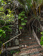 This once fine resort was never restored after hurricane Iniki devastated the Garden Island coast. <br /> <br /> I found the ruin beautiful as I do most ruins once the stink of decay has been removed by the pikake scented trade winds.