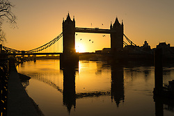 © Licensed to London News Pictures. 02/01/2017. LONDON, UK.  Birds fly in front of a golden sunrise behind Tower Bridge on the River Thames in London this morning during cold and clear weather following heavy rain yesterday.  Photo credit: Vickie Flores/LNP