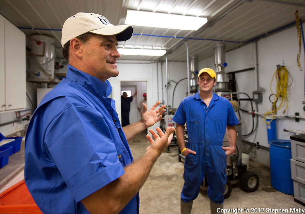 Tom Dittmer (from left) and Ben Dittmer talk about their cleaning processes at Grandview Farms in Eldridge, Iowa on Thursday August 9, 2012.