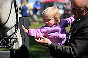 27 March 2010 : A young steeplechasing fan enjoys time with some of the outrider horses in the paddock before the 5th race.