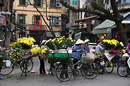 Flower sellers in the Old Quarter, Hanoi, Vietnam, Southeast Asia