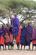 Africa, Tanzania, Maasai an ethnic group of semi-nomadic people. Tribal dancing