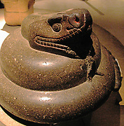 Stone Rattlesnake (Crotalus durissus).  The Aztecs carved naturalistic sculptures of certain reptiles, birds and insects which were closely observed.  The rattle consists of 13 segments but each time the snake sheds its skin, a new segment is produced.