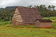 Farm in La Palma, Pinar del Rio, Cuba.
