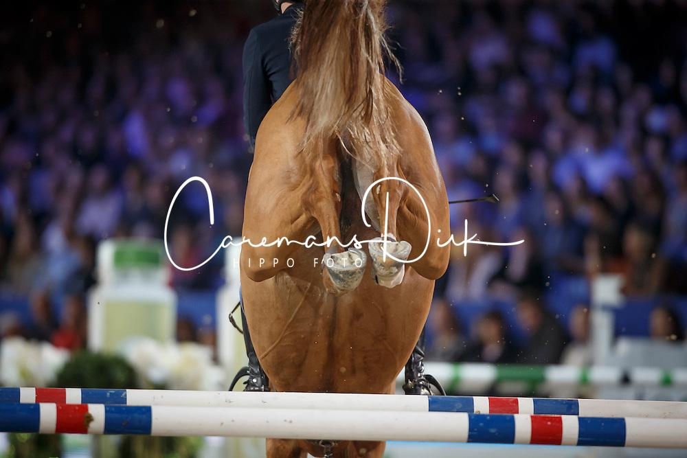 Devos Pieter, (BEL), Inshallah de Muze <br /> Zangersheide Young Stallions 7 years of age<br /> Vlaanderen Kerstjumping - Memorial Eric Wauters - <br /> Mechelen 2015<br /> © Hippo Foto - Dirk Caremans<br /> 27/12/15