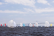 Viper 640 Class racing in Bacardi Newport Sailing Week, day 3.