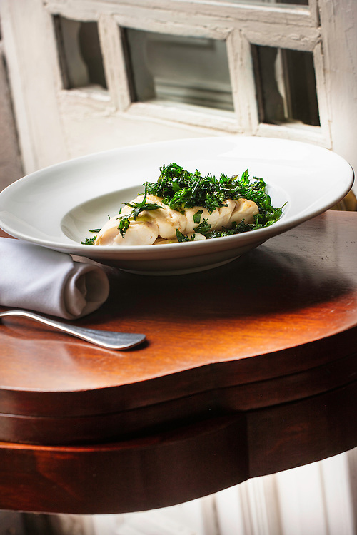 Epinephelus flavolimbatus, mero de aletas amarillas, mero extraviado, acompañado de rodajas de hinojo fresco, cocido al vapor. /yellowedge grouper,Epinephelus flavolimbatus , steamed with fresh fennel and topped with fried parsley