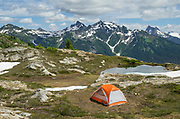 Big Agnes tent in backcountry campsite. Yellow Aster Butte Basin, Mount Baker Wilderness, North Cascades Washington