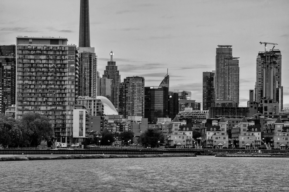 Toronto Skyline from Trillium Park (monochrome)