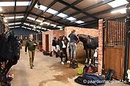 2017-03-jv-horses