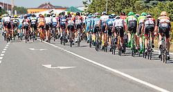 05.07.2017, Altheim, AUT, Ö-Tour, Österreich Radrundfahrt 2017, 3. Etappe von Wieselburg nach Altheim (226,2km), im Bild Peloton Feature // Peloton Feature during the 3rd stage from Wieselburg to Altheim (199,6km) of 2017 Tour of Austria. Altheim, Austria on 2017/07/05. EXPA Pictures © 2017, PhotoCredit: EXPA/ JFK