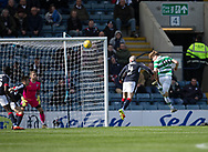 Celtic&rsquo;s Stuart Armstrong heads home his side's second goal - Dundee v Celtic in the Ladbrokes Scottish Premiership at Dens Park, Dundee.Photo: David Young<br /> <br />  - &copy; David Young - www.davidyoungphoto.co.uk - email: davidyoungphoto@gmail.com